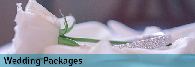 weddingpackages 650x215 blue bar NEW