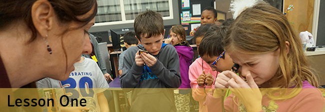 Biomimicry lesson one