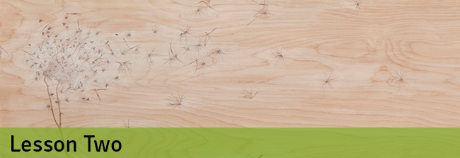 Biomimicry lesson two