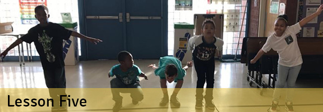 Biomimicry lesson five