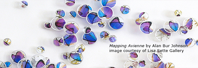 Alan Bur Johnson