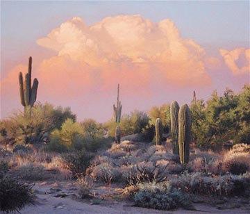 arizona landscapes 1
